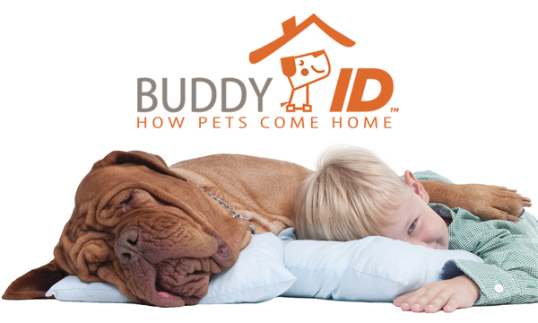 Buddy ID Mini Chip! Just for Pets.