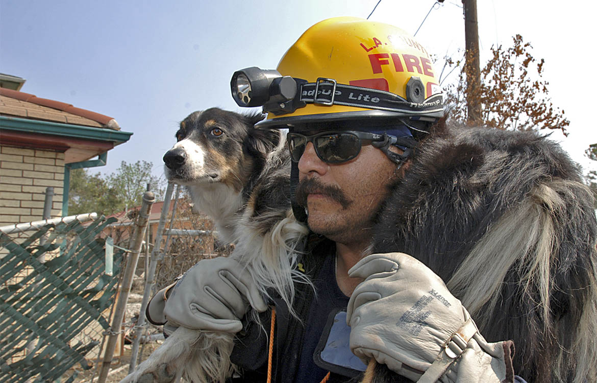 Microchips and disaster preparedness work together