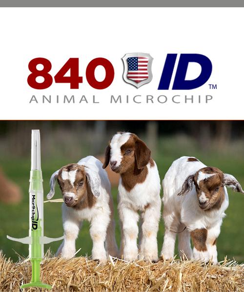 840 USDA microchip