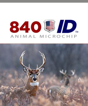 USDA 840 ID Microchip