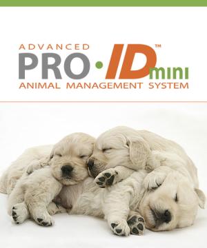 Best Selling Pro ID Mini
