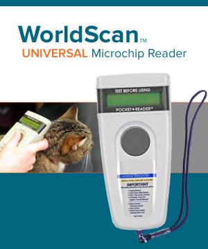 WorldScan