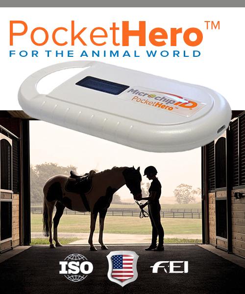 Pocket Hero for horses